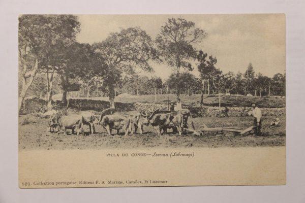 Villa do Conde - Lavoura (Labourage) - postal